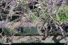 2002-04-07