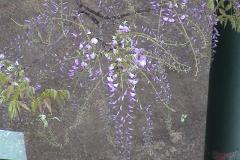 2003-04-23