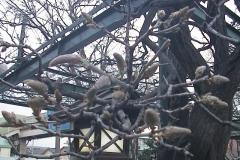 2010-04-03
