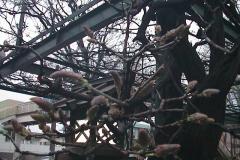 2010-04-05