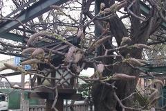 2010-04-09