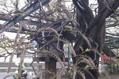 2010-04-15