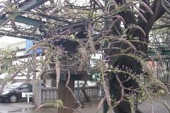 2010-04-16