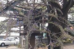 2010-04-19