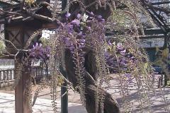 2010-04-21