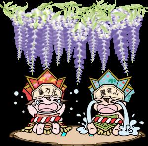 國領神社 泣き相撲